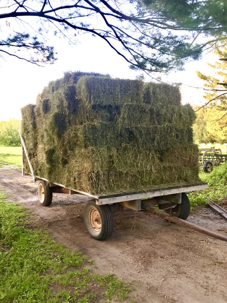 Wagon full of hay.