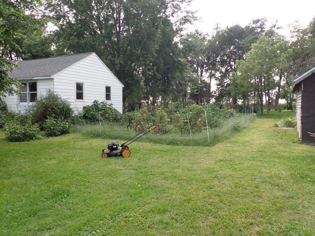 Large garden next to Annie and Nicks' house. In front of the garden is the small push mower.