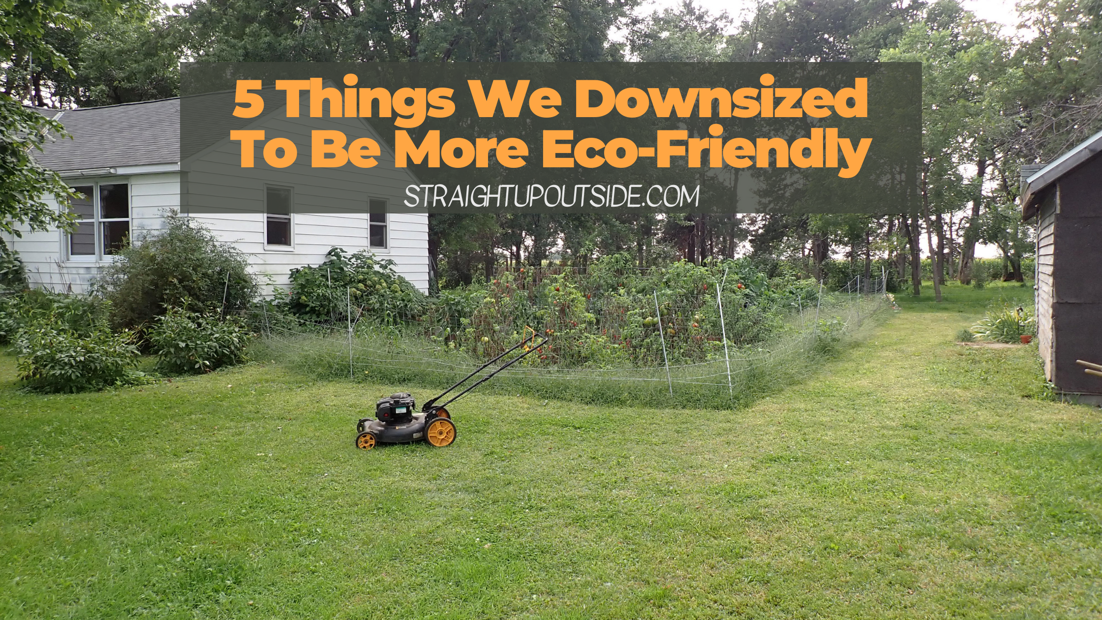 5 Things We Downsized To Be More Eco-Friendly
