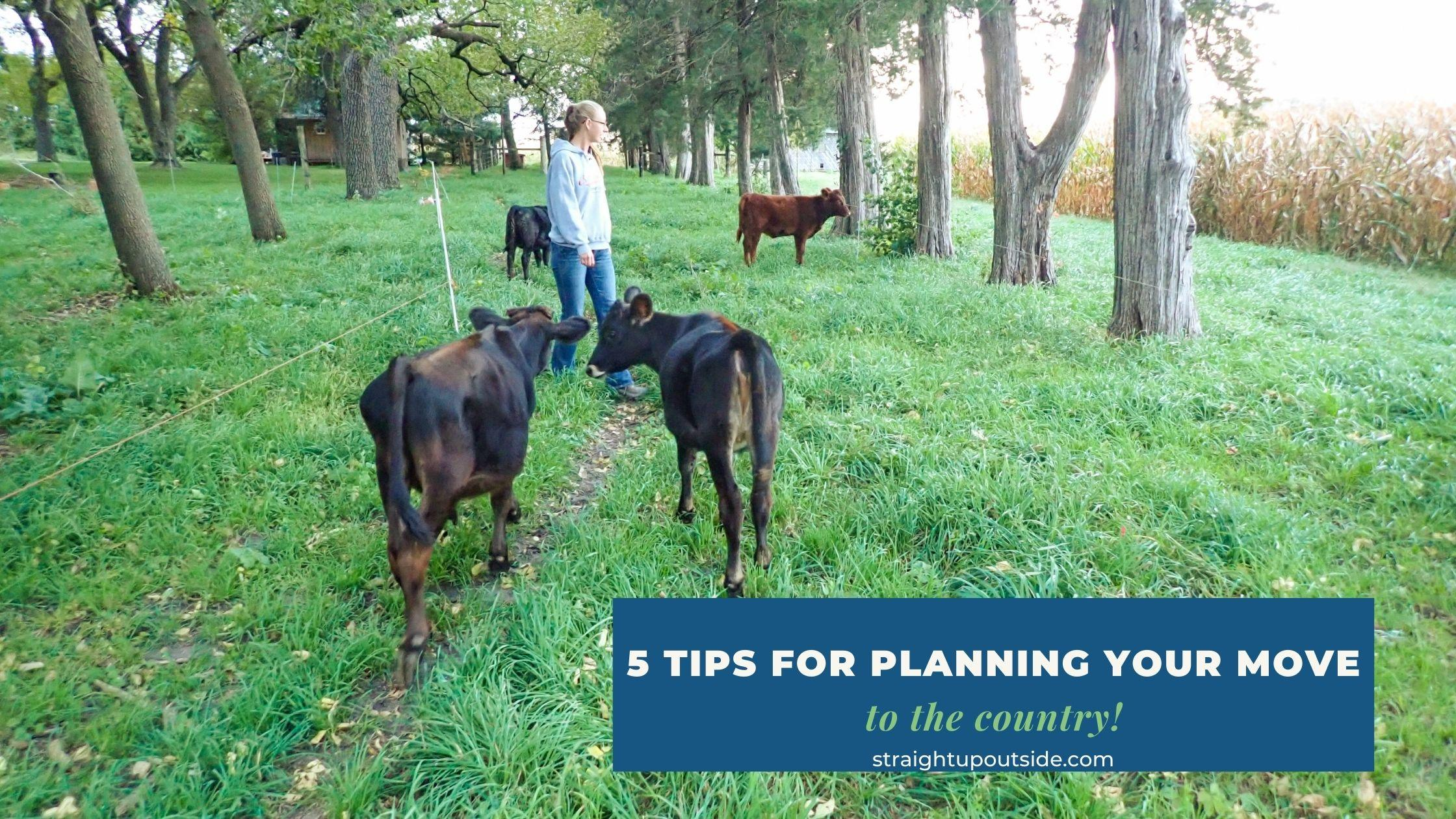 5 Tips For Planning Your Move To The Country