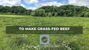 To Make Grass-Fed Beef