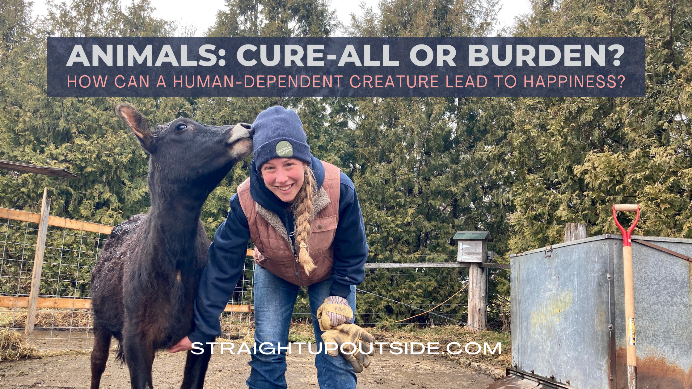 Animals: Cure-All Or Burden?